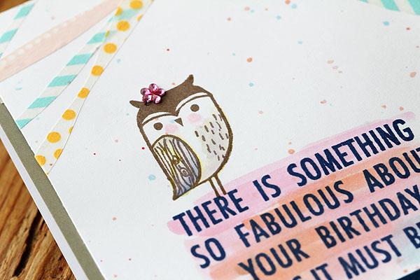 owl-closeup