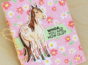 Adopt an Animal — Stamp Set, that is! (+ GIVEAWAY!)